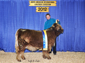 2012 NAILE Division Champion Betsy