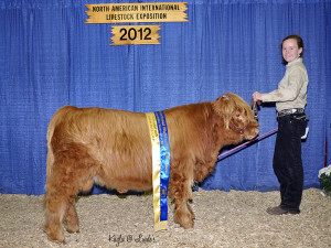 2012 Naile Divsion Champion Titus