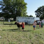 2012-midwest-cow-camp-013