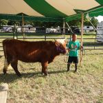 2012-midwest-cow-camp-020