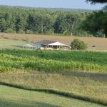 2012-midwest-cow-camp-024