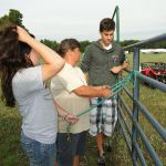 2012-midwest-cow-camp-035