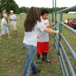 2012-midwest-cow-camp-037