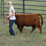 2012-midwest-cow-camp-040