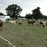 2012-midwest-cow-camp-081