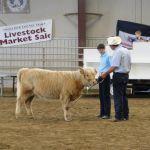 2014 Boulder County Fair & WY State Fair 020