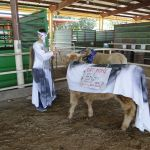 """Eric DeLuke championing """"the cause"""" at the costume contest at the 2014 Boulder County Fair"""