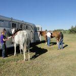 2014 Boulder County Fair & WY State Fair 057