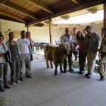 2014 calves & CA trip 034
