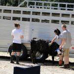 eric-2013-cow-camp-030-jpg