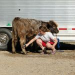 eric-2013-cow-camp-051-jpg