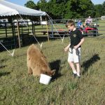 eric-2013-cow-camp-072-copy-jpg