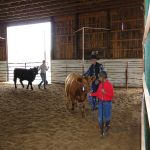 Isaiah Moore and Steer 2